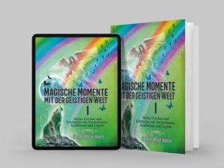 Magische Momente mit der geistigen Welt Band 1