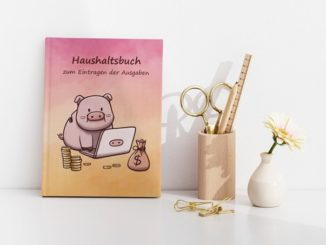 Haushaltsbuch Schwein am PC